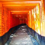 Kyoto -Rushimi-Inari taisha Shrine Kyoto Aug 2012