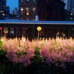 Singularity 2 - The High Line NYC 2012